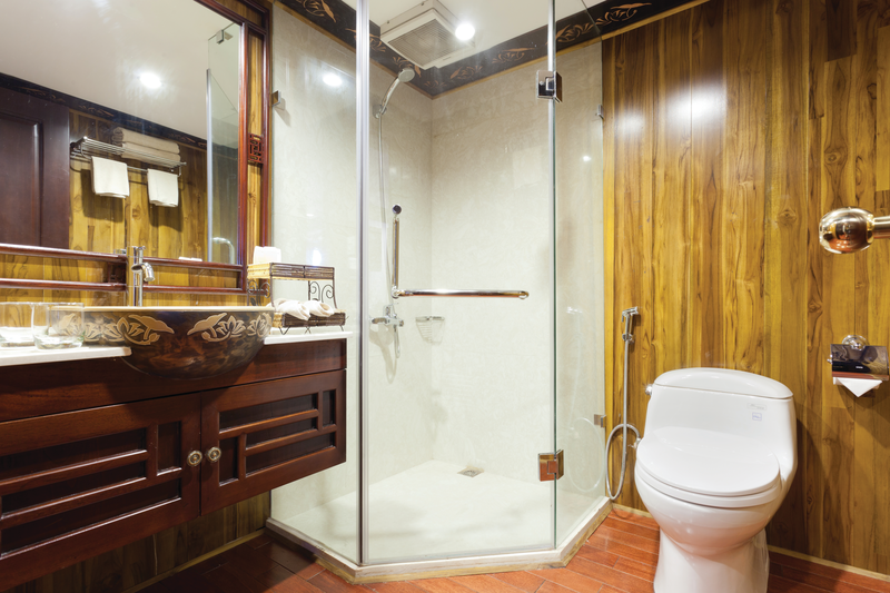 APT Guided Tours & River Cruises RV Apsara Category A or B bathroom.png